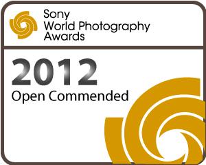 sony-world-photography-awards